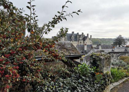 Montsoreau-201904